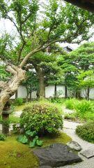 美しいお庭