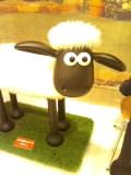 アイルランドの羊は