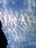 これは、なに雲?