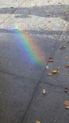 虹の端っこには
