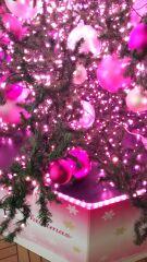 それぞれのクリスマス