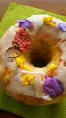 春のドーナツ